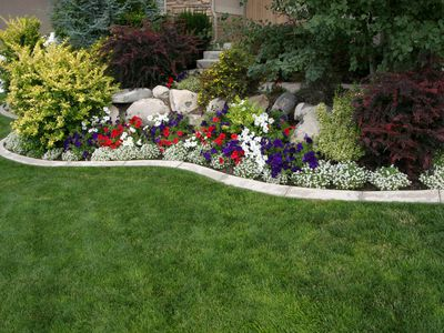 Landscaping With Dogs in Mind: Tips for Canine Owners