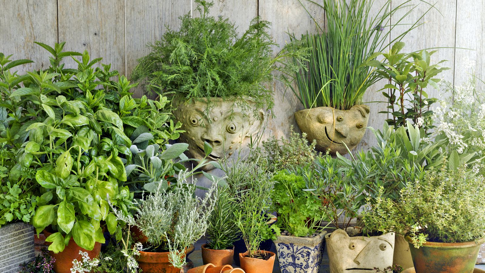 What Can You Sell From Your Herb Garden