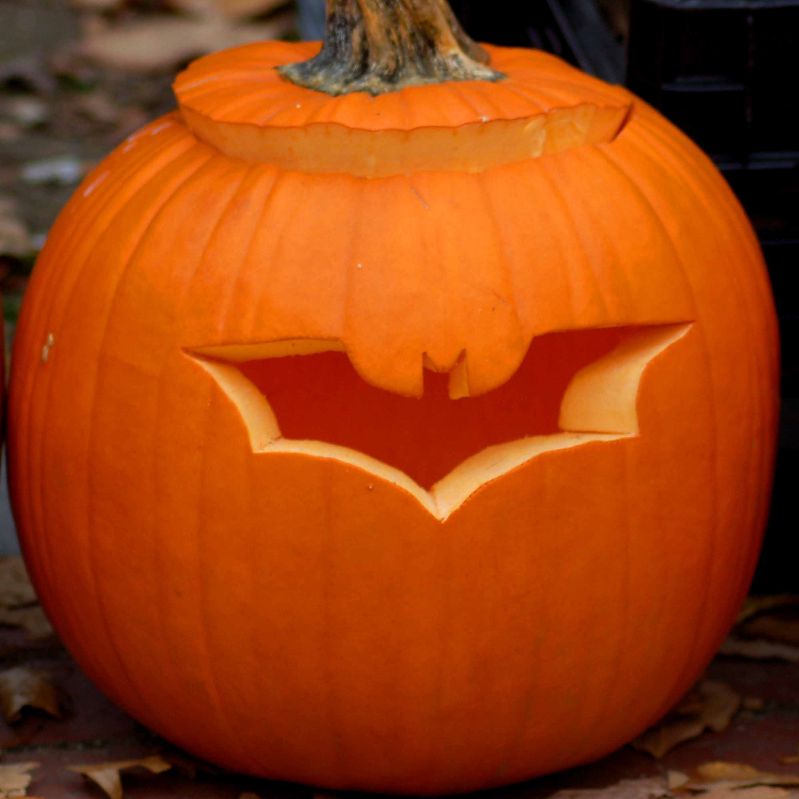 Bat Pumpkin Carving