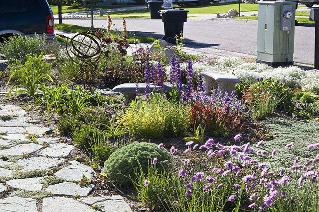 Jardín tolerante a la sequía