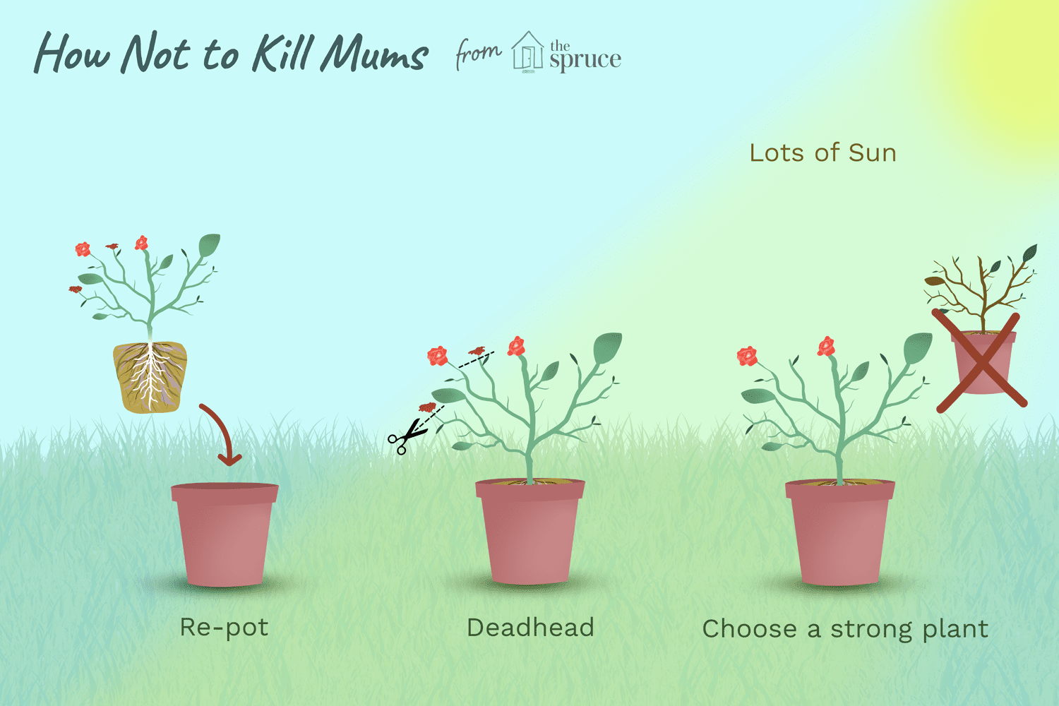 How Not To Kill Mums