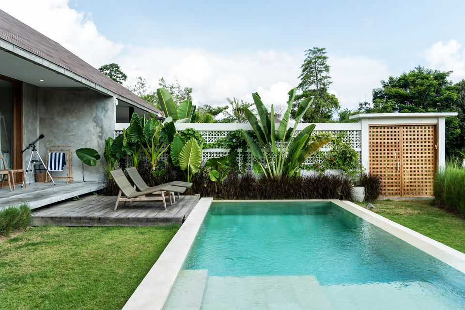Backyard swimming pool with white fence and plants