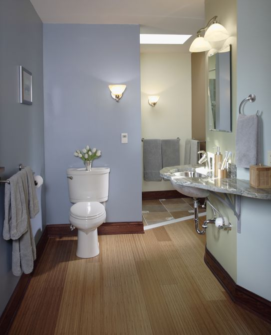 Wood and Tile Floor in Contemporary Bathroom