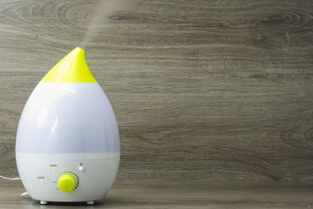 Ultrasonic vs  Evaporative Portable Humidifiers