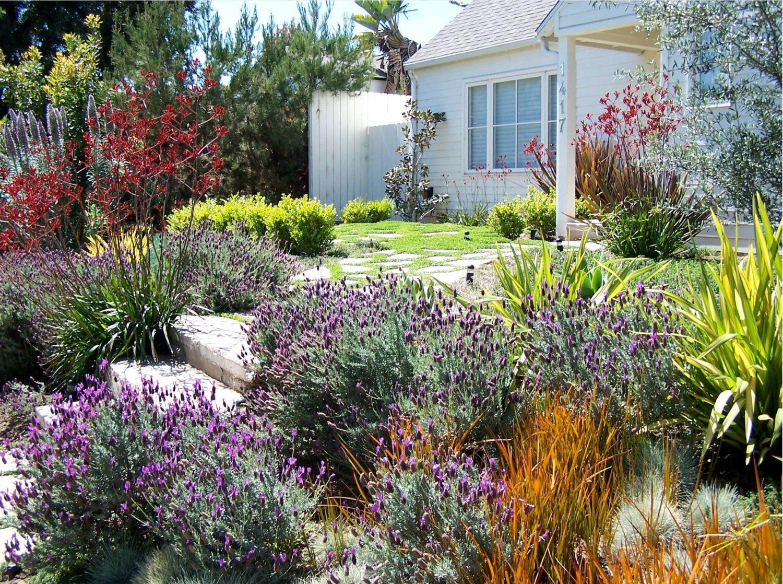 jardín de cabaña de California