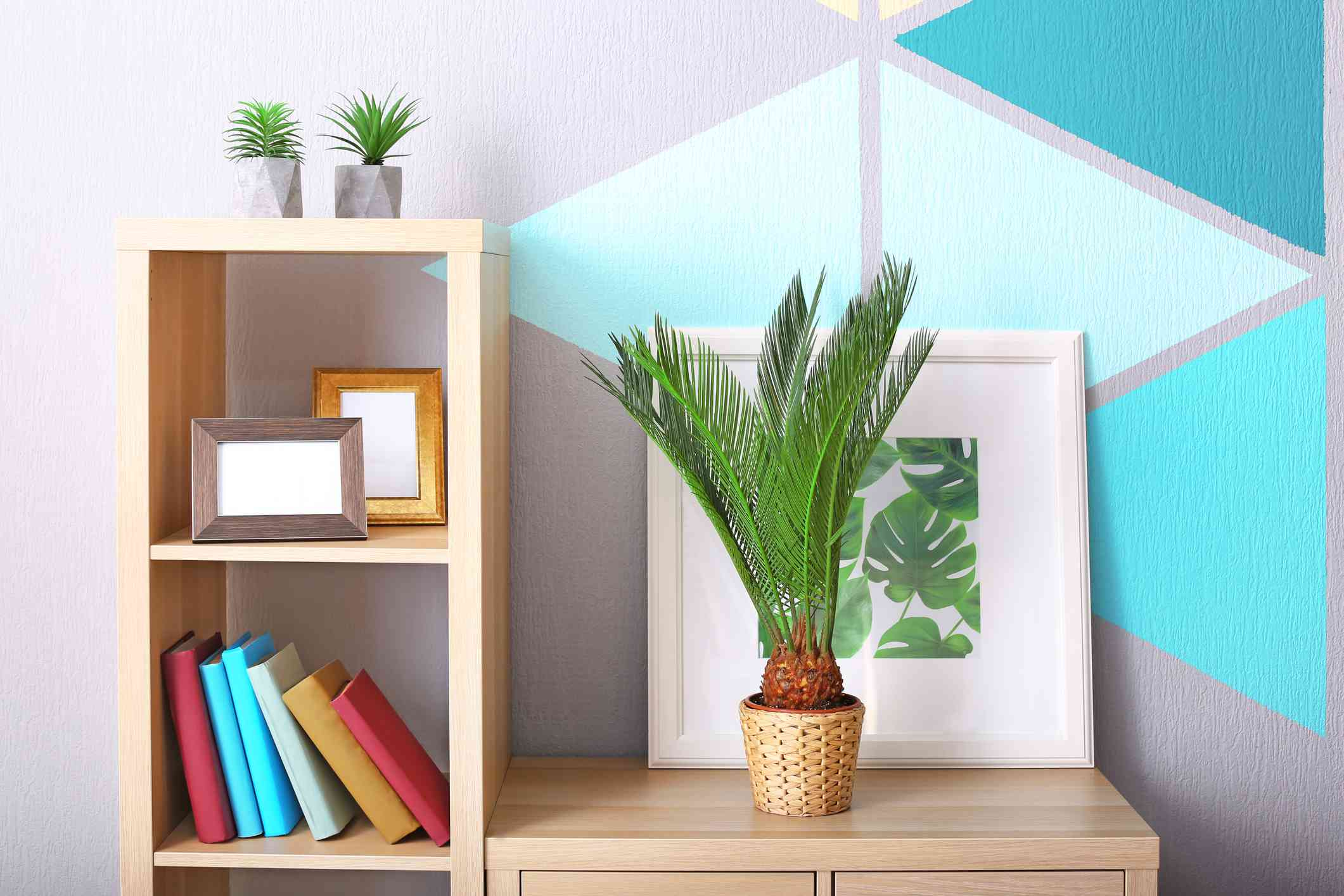 A sago palm sits on a wooden shelf in front of a framed photo.