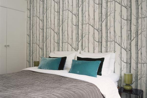 Bedroom with birch tree wallpaper