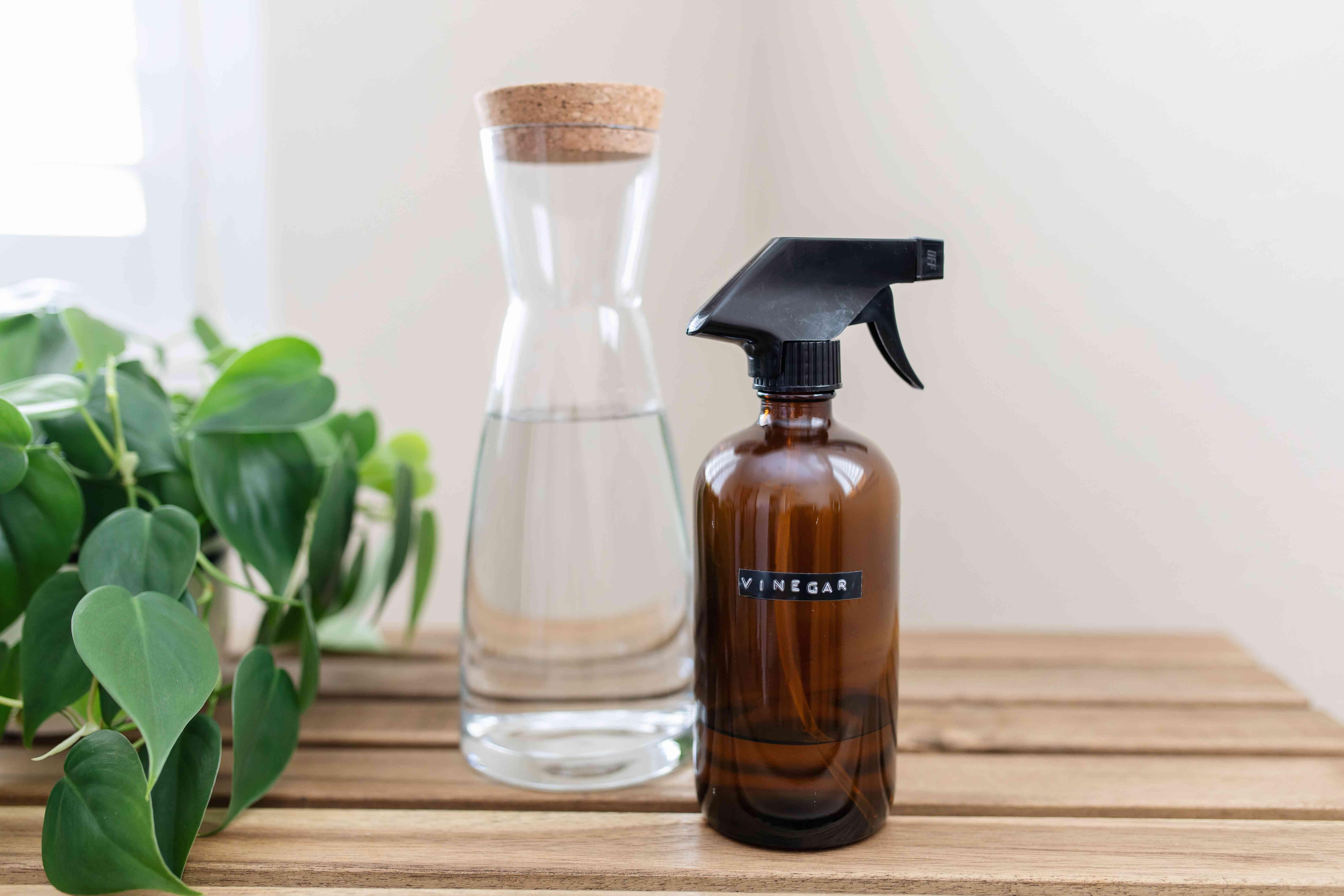 spray bottle of vinegar