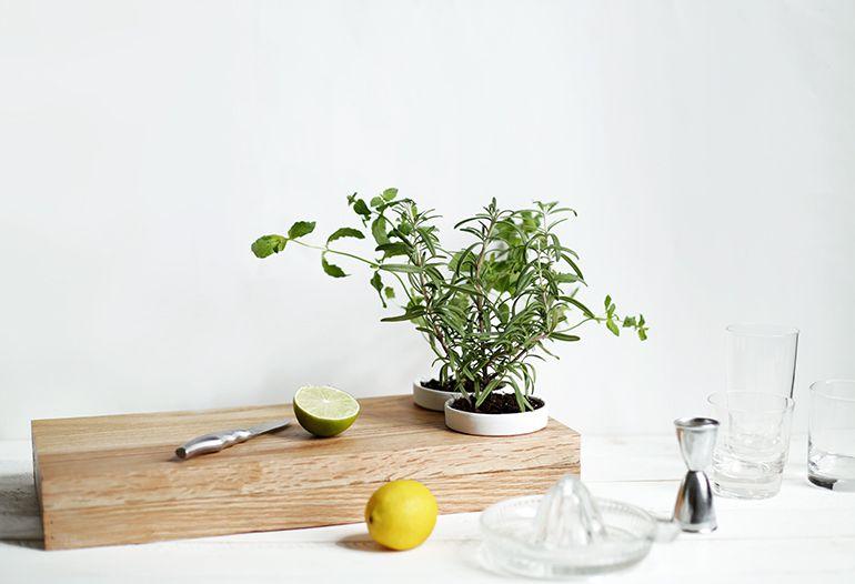 DIY Herb Planter Cutting Board