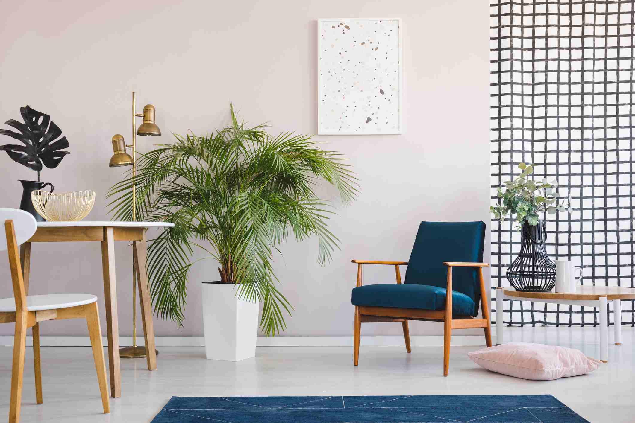 Silla en la mesa de madera en el luminoso comedor interior con plantas y póster sobre el sillón. Foto real