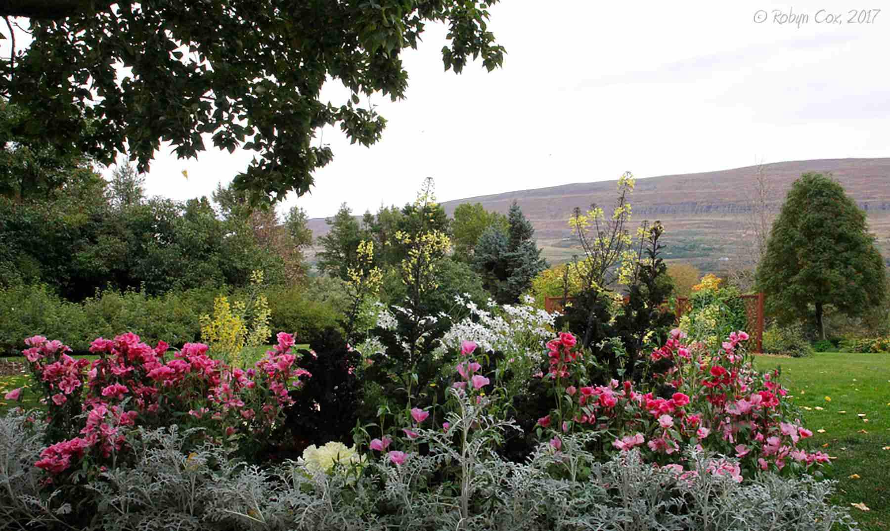 Large Flower Garden