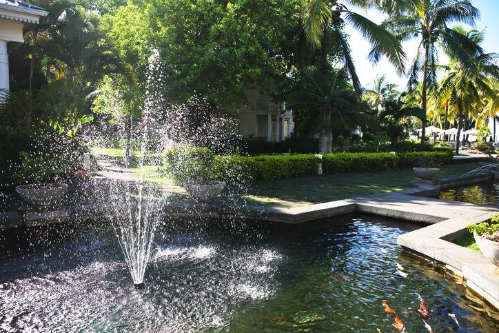 A spouting fountain in a koi pond.