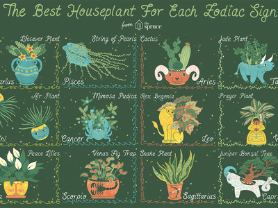 Horoscope Signs and Corresponding Herbs