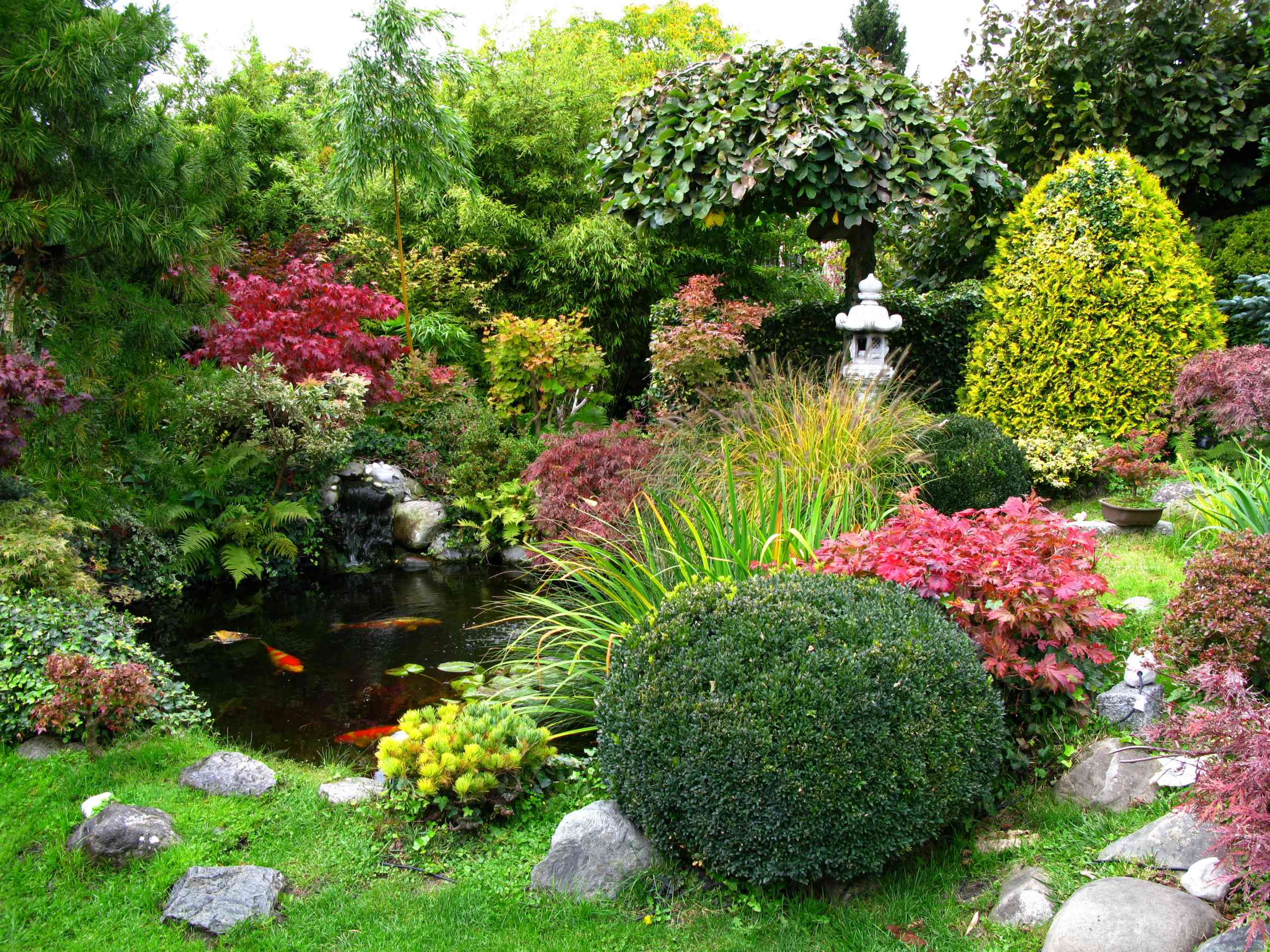 Koi pond with various plants, rocks and sculptures.