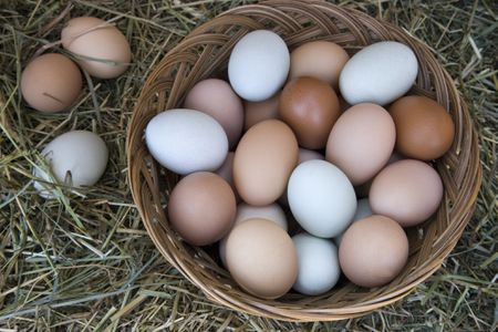 3cb6234e8d3f Tips for Thawing and Freezing Eggs