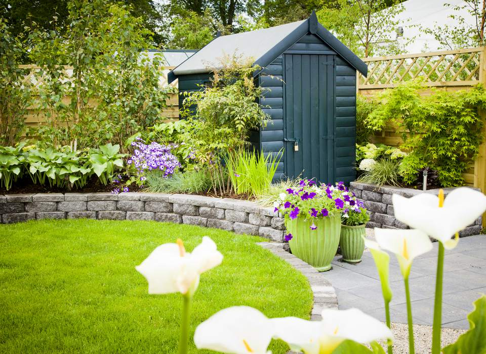 Green shed set in a garden with plants, wall, and fence