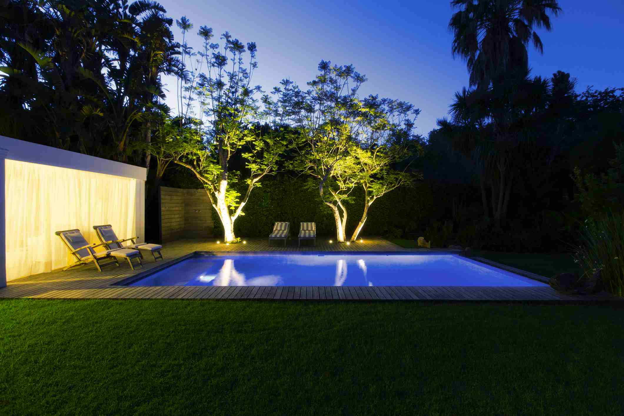 Illuminated swimming pool and trees in backyard at dusk