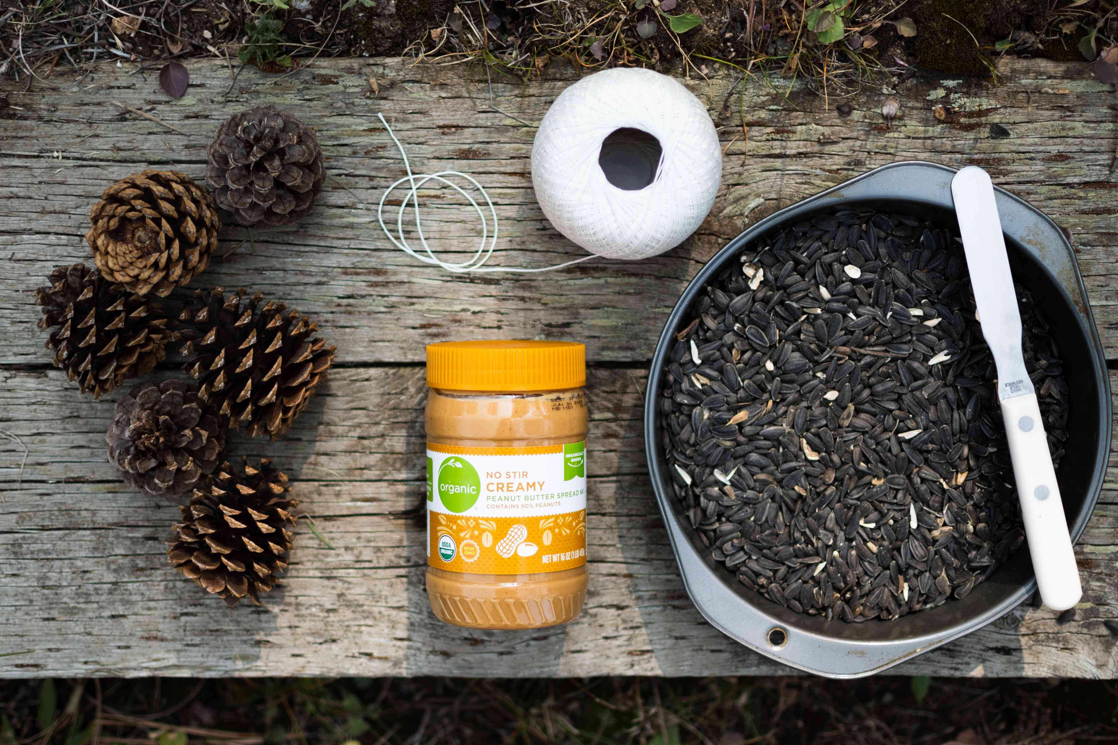 Materials to make a diy pine cone bird feeder