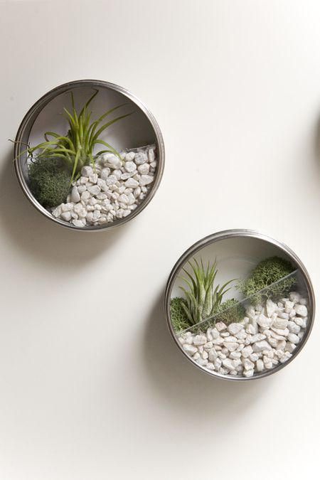 6 Diy Terrariums For Every Season