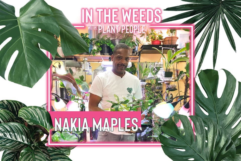 The Plant Guy Nakia Maples for In the Weeds With Plant People Episode 7