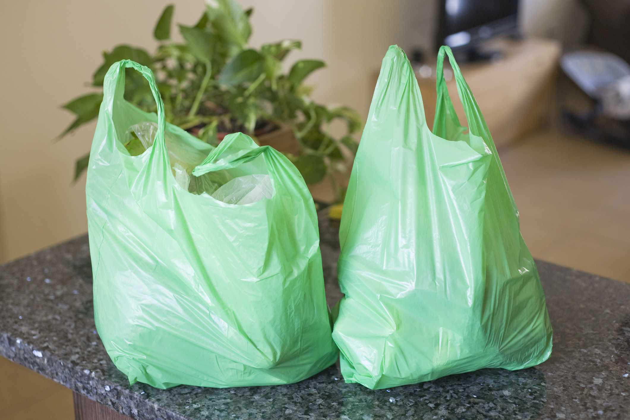 Green plastic bags on kitchen worktop.