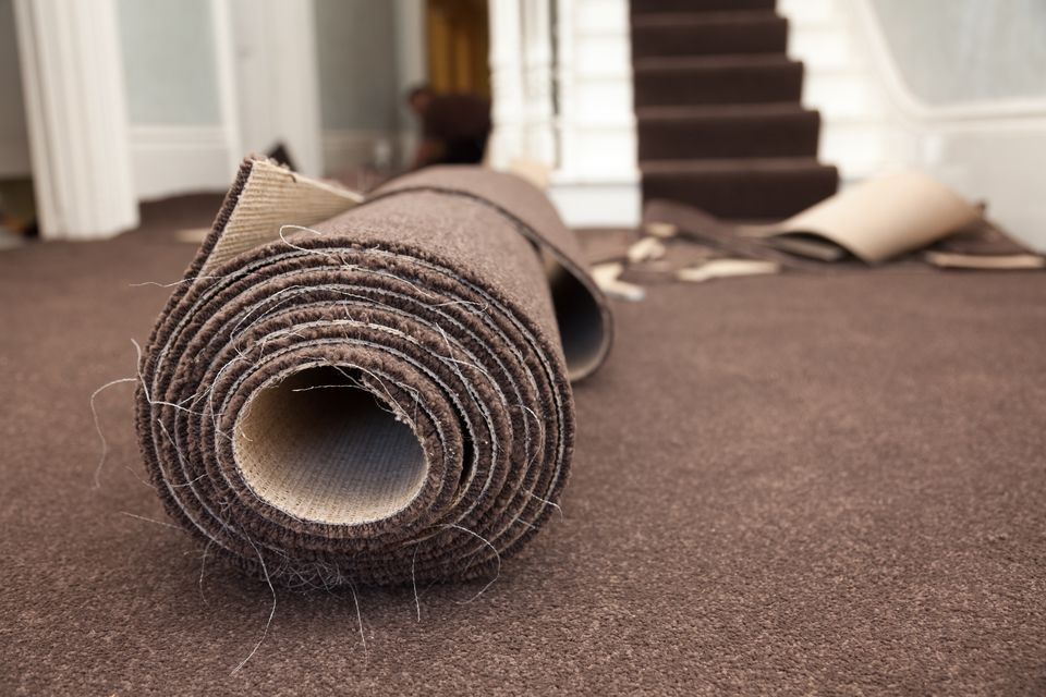 Roll of brown carpet against newly installed carpeting.