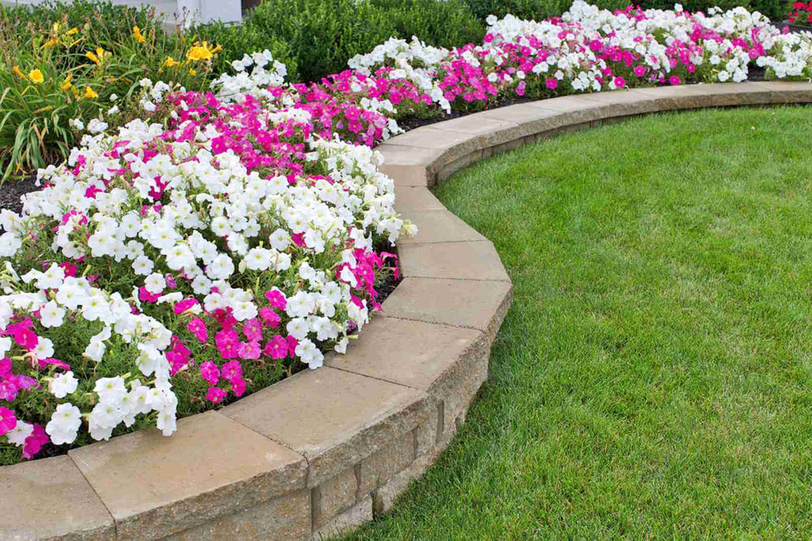 15 Garden Edging Ideas