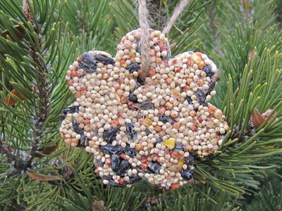 How to Make Birdseed Ornaments