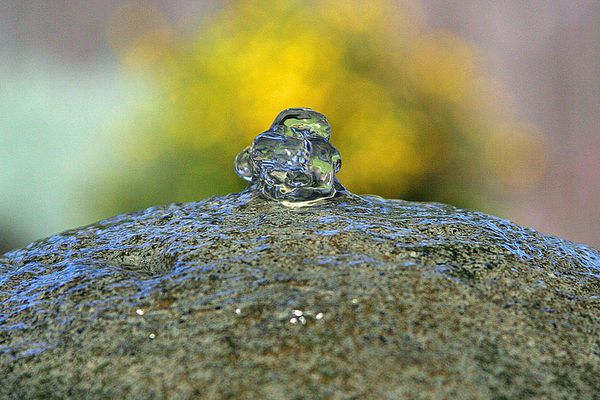 Water Bubbler