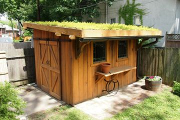 Shed with green roof of succulents