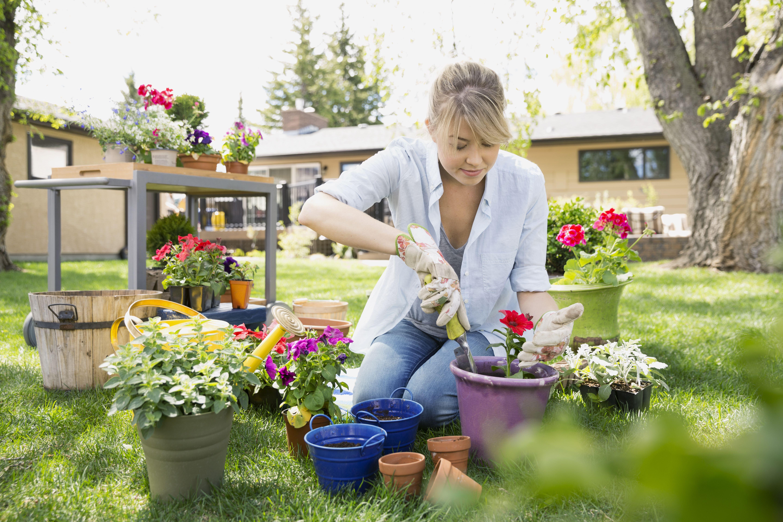 даже сад огород дача цветы мое хобби фото анны окончил вшэ
