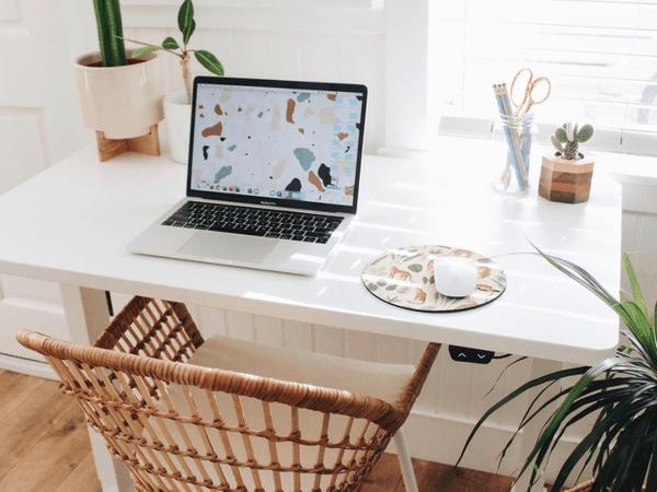 A minimalist desk with cacti.