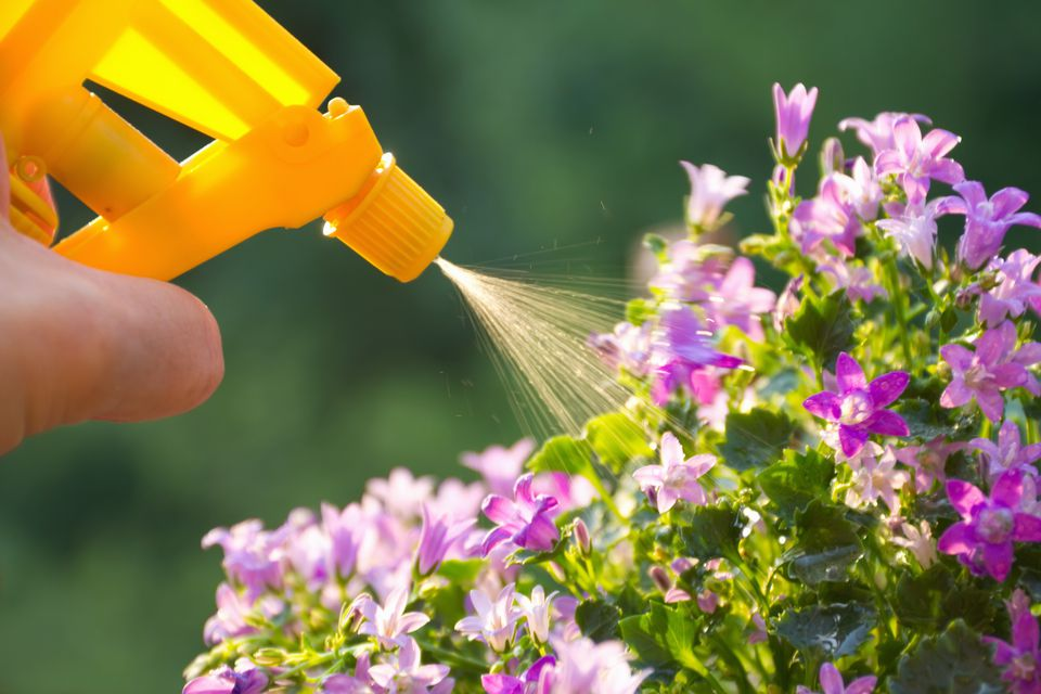Garden pesticide