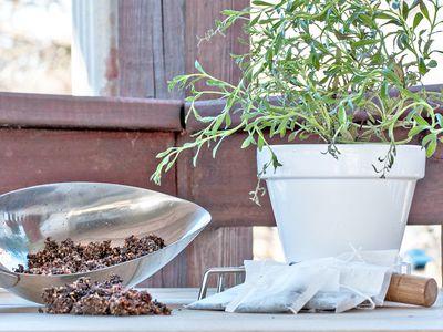 Used tea leaves in soil