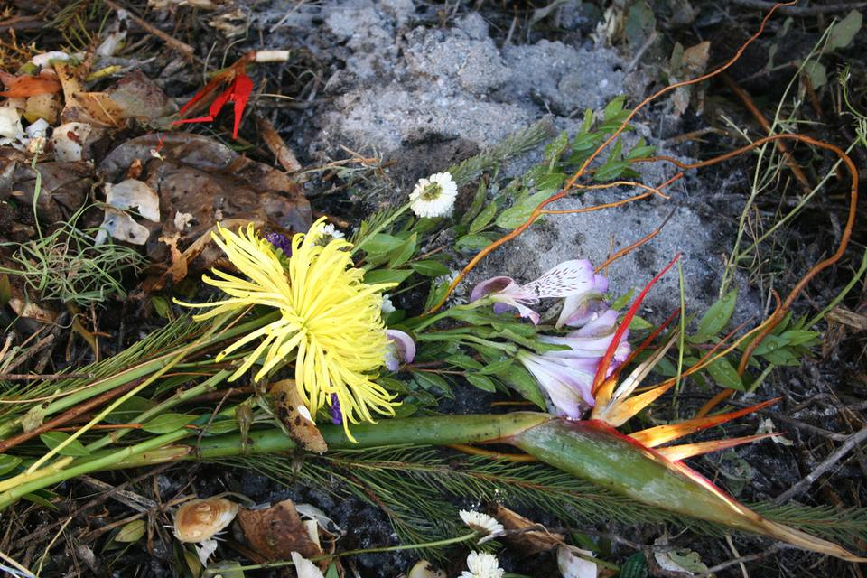 Compost of flowers, food, and ash