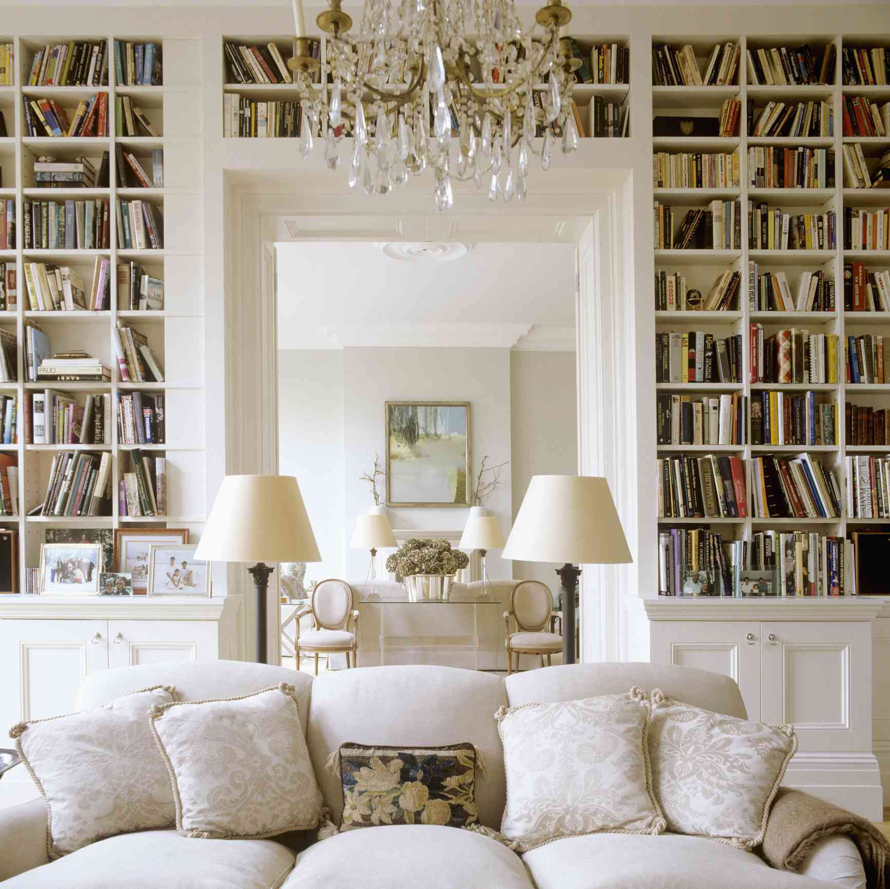 Cozy living room with bookshelves