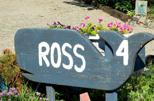 Beach-theme yard signs look great in seaside communities.
