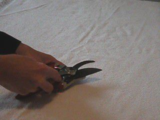 Disassemble Pruners - How to Sharpen Hand Pruners