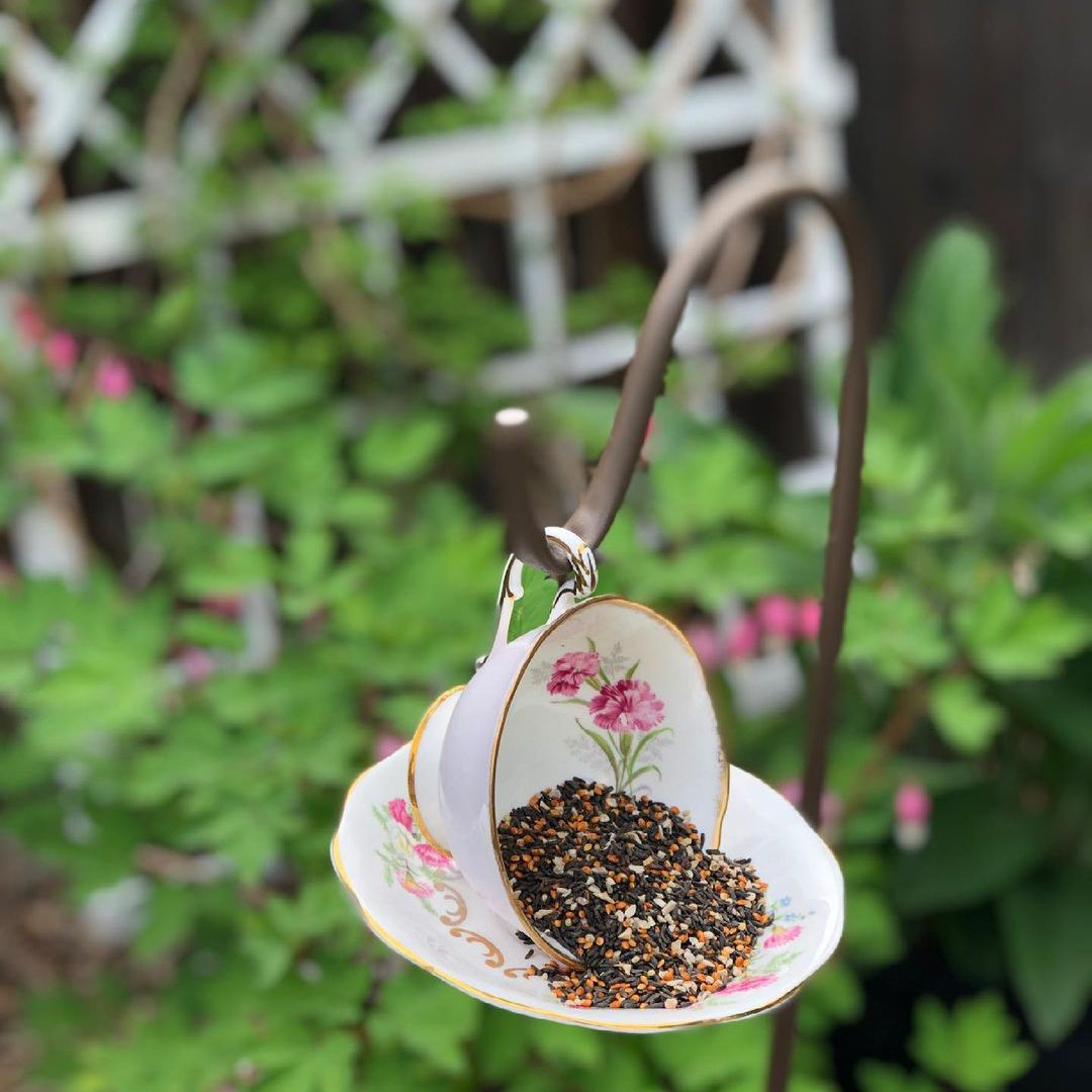 @kastlesvintage teacup feeder