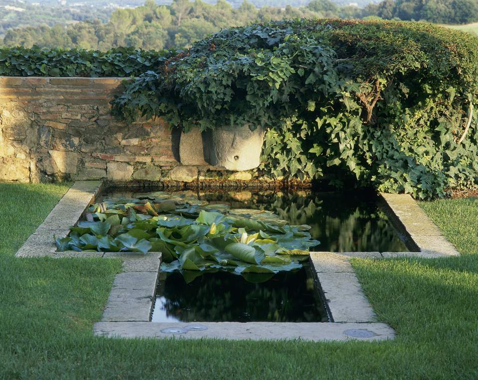 Great Plants for Small Backyard Ponds on small plastic outdoor ponds, concrete fish ponds, raised water garden, gardening ponds, raised landscape ponds, beautiful goldfish ponds, above ground ponds, raised small fish ponds, small indoor fish ponds, small backyard ponds, raised stone pond, raised koi pond ideas, best koi ponds, koi fish ponds, raised pond kit, raised wood pond, flower bed ponds, backyard koi ponds, raised goldfish ponds, small ornamental ponds,