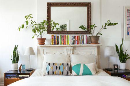 Snake Plants Bedroom