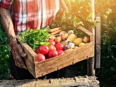 Selling Farm Products To Distributors