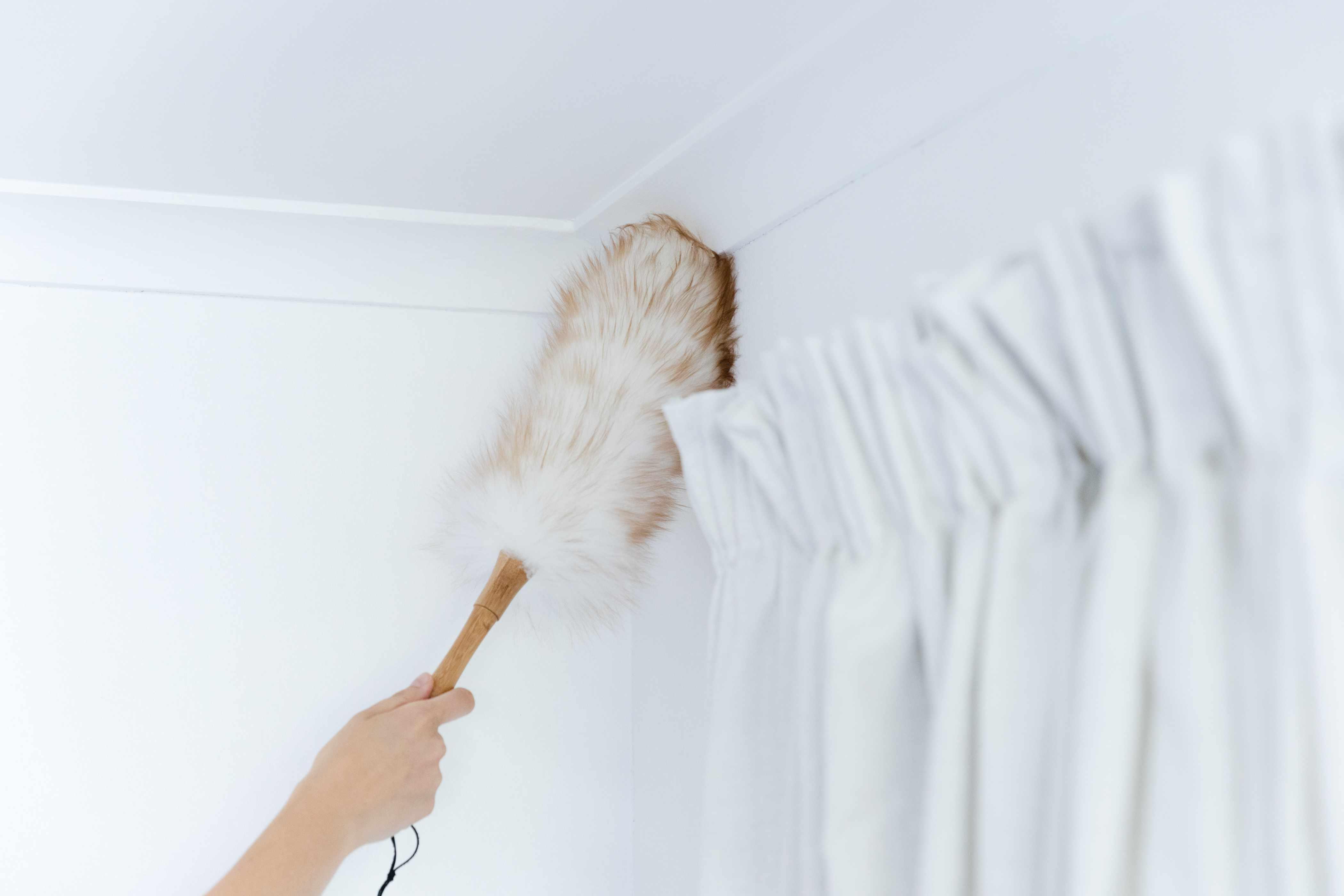 dusting ceiling corners