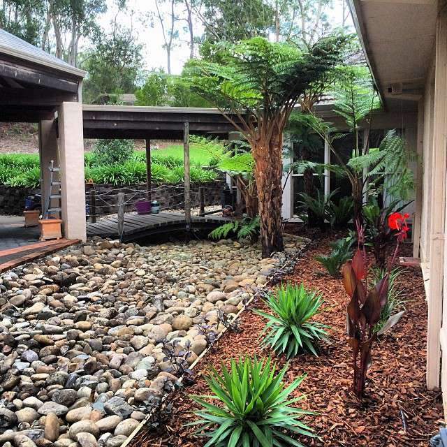 tropical garden plants with pine bark mulch bed