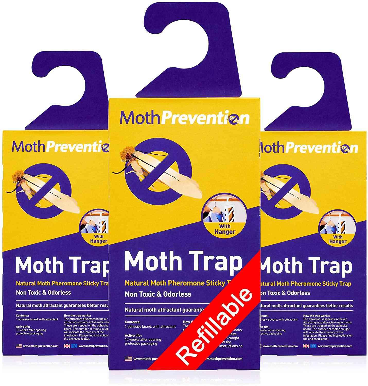 Clothes Moth Traps
