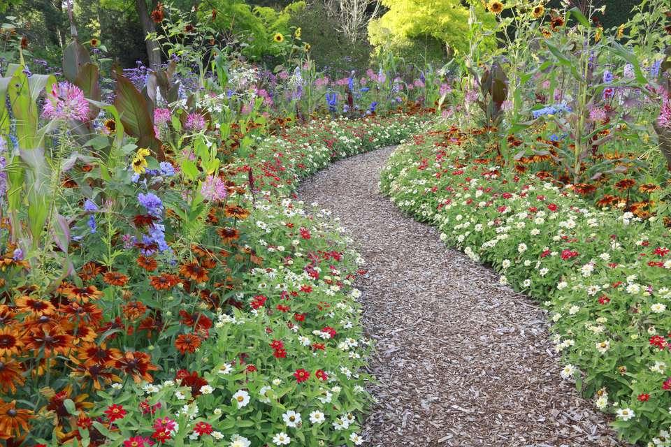 Gran jardín de flores de verano