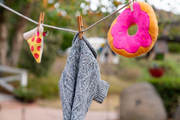 dog clothing and toys on a clothesline