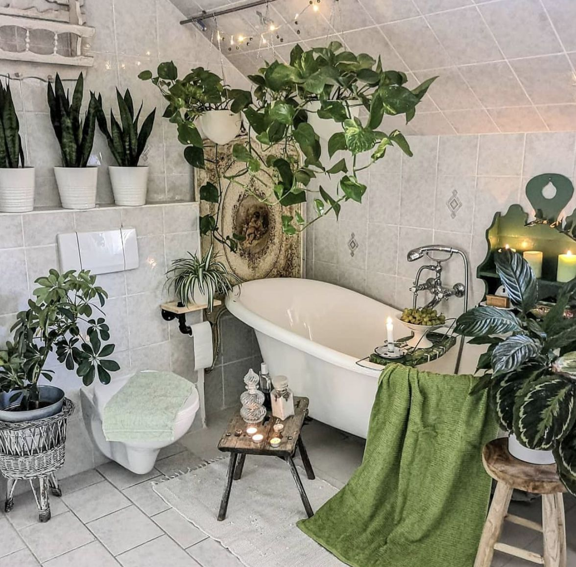 17 Bathroom Plants That Were Styled Perfectly