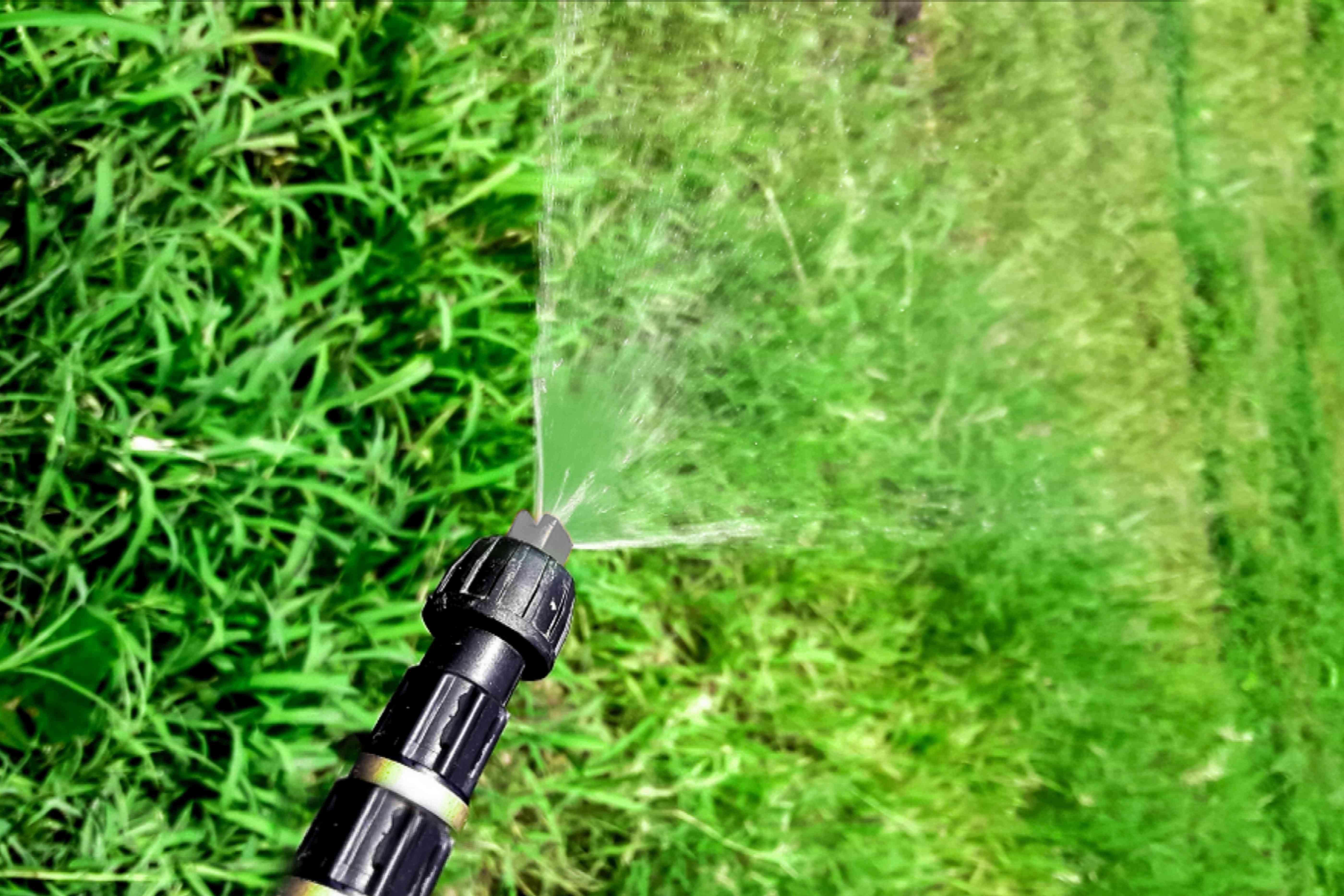 applying fungicide