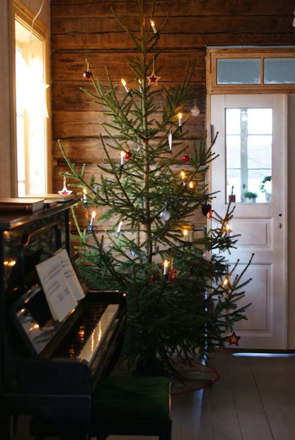 12 Christmas Tree.12 Scandinavian Christmas Trees